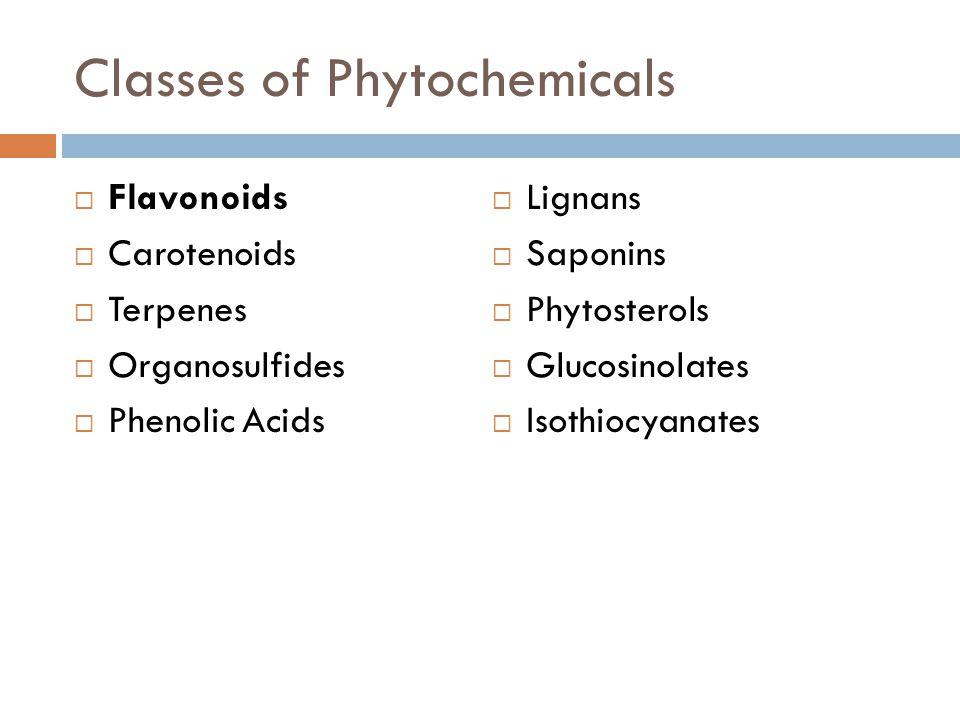 Classes of Phytochemicals  Flavonoids  Carotenoids  Terpenes  Organosulfides  Phenolic Acids  Lignans  Saponins  Phytosterols  Glucosinolates