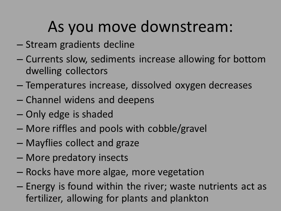 As you move downstream: – Stream gradients decline – Currents slow, sediments increase allowing for bottom dwelling collectors – Temperatures increase, dissolved oxygen decreases – Channel widens and deepens – Only edge is shaded – More riffles and pools with cobble/gravel – Mayflies collect and graze – More predatory insects – Rocks have more algae, more vegetation – Energy is found within the river; waste nutrients act as fertilizer, allowing for plants and plankton