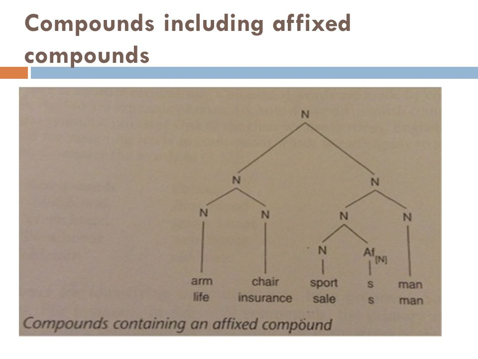Compounds including affixed compounds