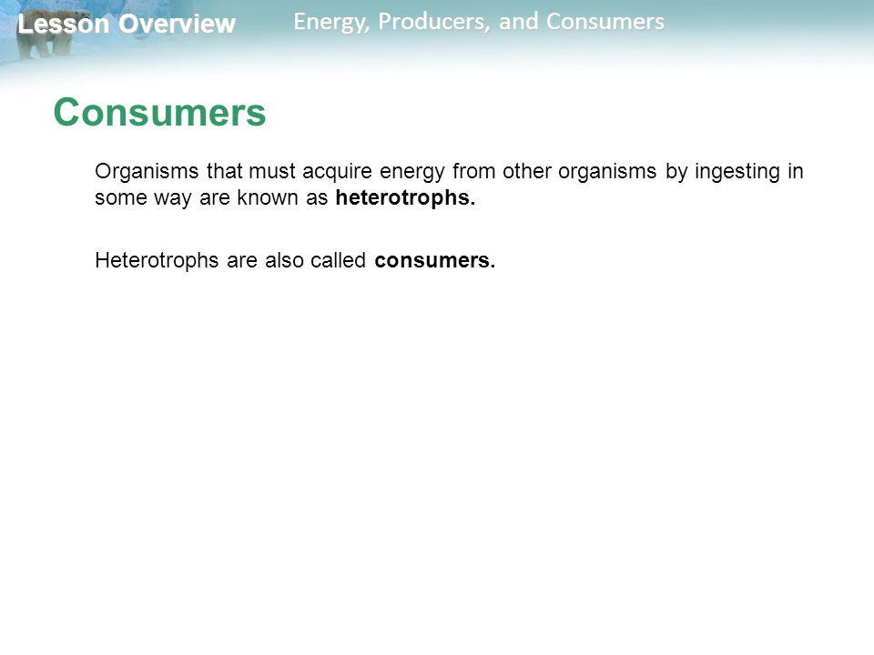 Lesson Overview Lesson Overview Energy, Producers, and Consumers Consumers Organisms that must acquire energy from other organisms by ingesting in som