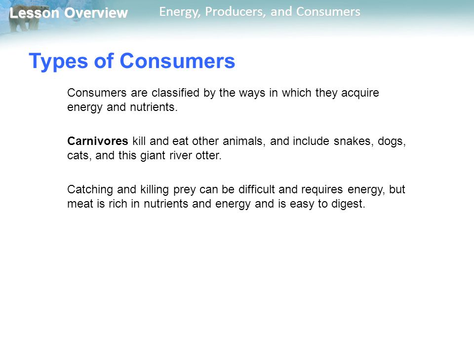 Lesson Overview Lesson Overview Energy, Producers, and Consumers Types of Consumers Consumers are classified by the ways in which they acquire energy