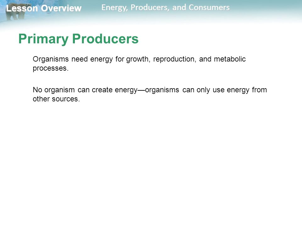 Lesson Overview Lesson Overview Energy, Producers, and Consumers Primary Producers Organisms need energy for growth, reproduction, and metabolic proce
