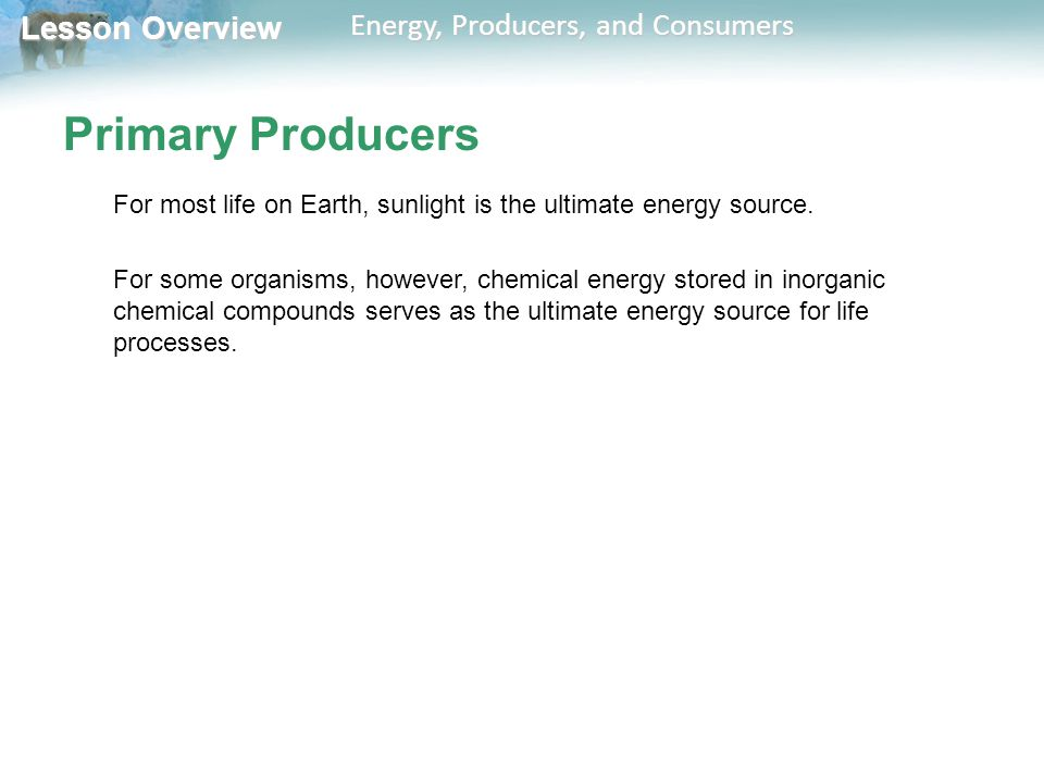Lesson Overview Lesson Overview Energy, Producers, and Consumers Primary Producers For most life on Earth, sunlight is the ultimate energy source. For