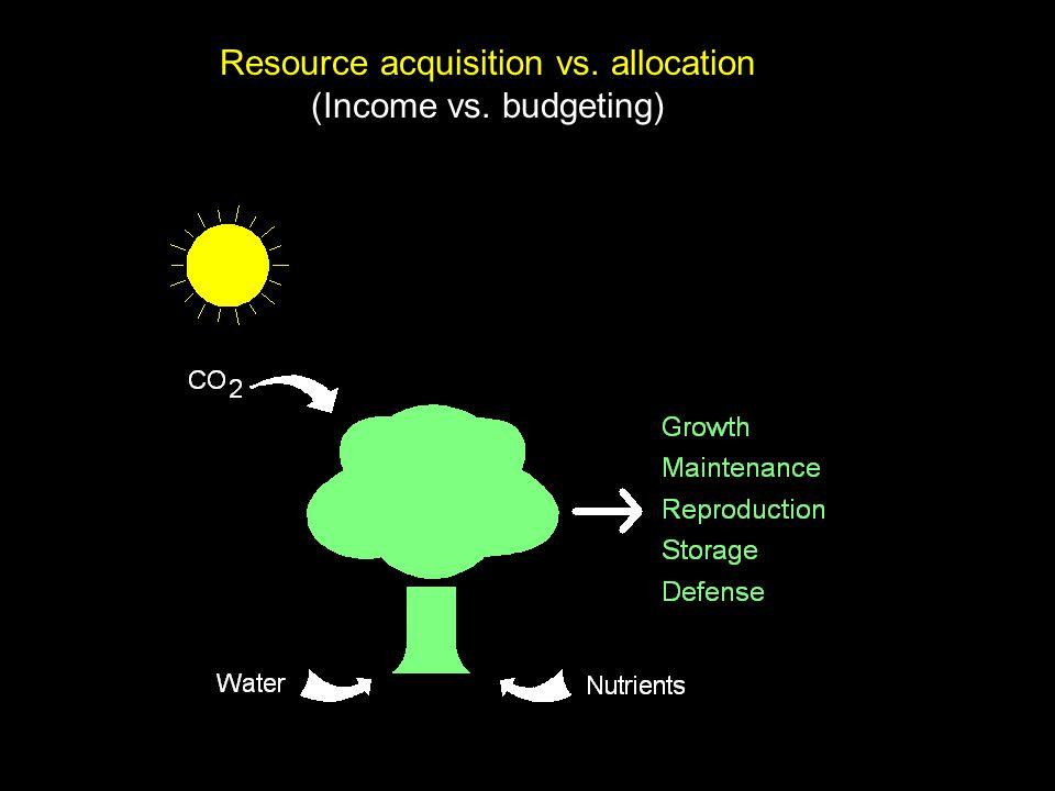 Whole plant carbon budget: photosynthesis rate per unit leaf area total leaf area