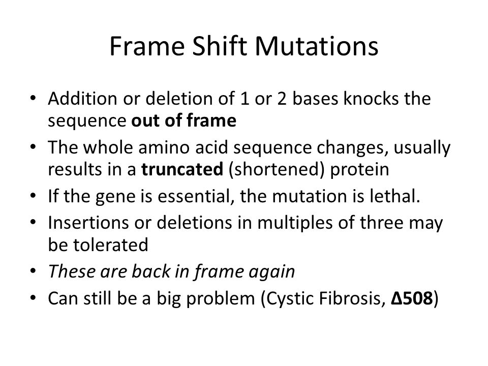 Frame Shift Mutations Addition or deletion of 1 or 2 bases knocks the sequence out of frame The whole amino acid sequence changes, usually results in a truncated (shortened) protein If the gene is essential, the mutation is lethal.