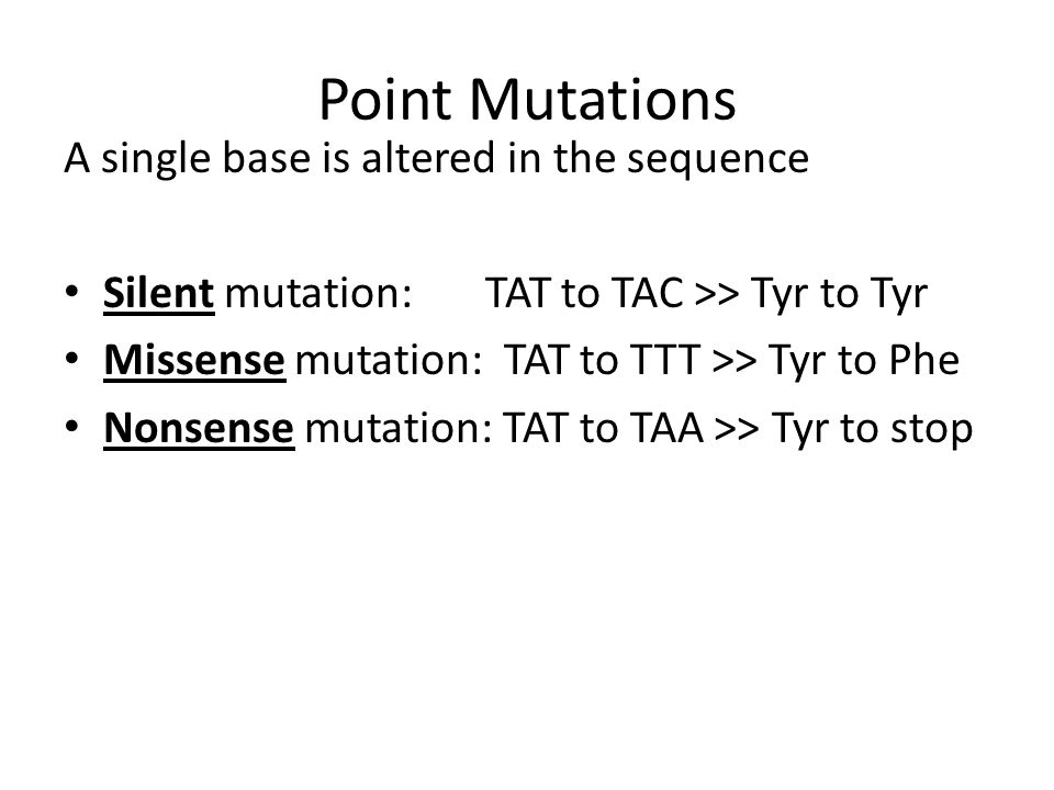 Potential Reading Frames Since triplet codons are read, there are three reading frames in the forward direction.