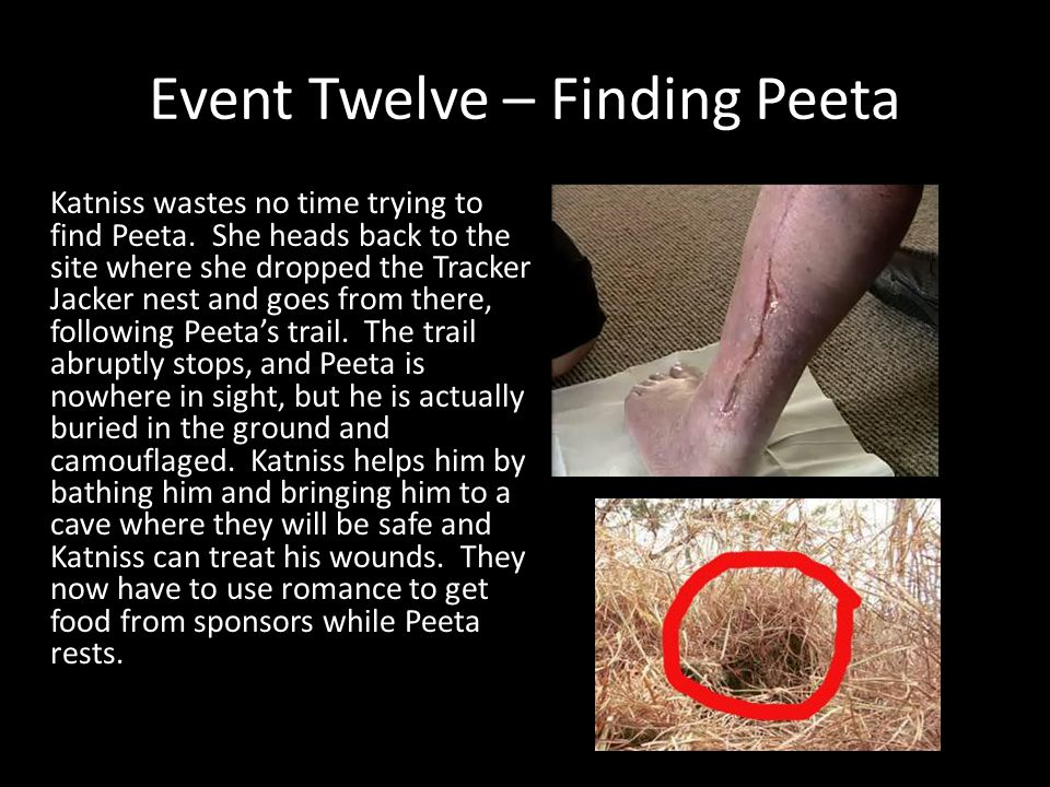 Event Twelve – Finding Peeta Katniss wastes no time trying to find Peeta. She heads back to the site where she dropped the Tracker Jacker nest and goe