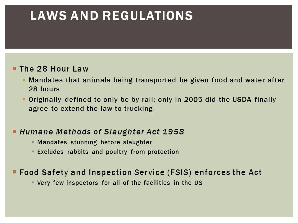  The 28 Hour Law  Mandates that animals being transported be given food and water after 28 hours  Originally defined to only be by rail; only in 2005 did the USDA finally agree to extend the law to trucking  Humane Methods of Slaughter Act 1958  Mandates stunning before slaughter  Excludes rabbits and poultry from protection  Food Safety and Inspection Service (FSIS) enforces the Act  Very few inspectors for all of the facilities in the US LAWS AND REGULATIONS