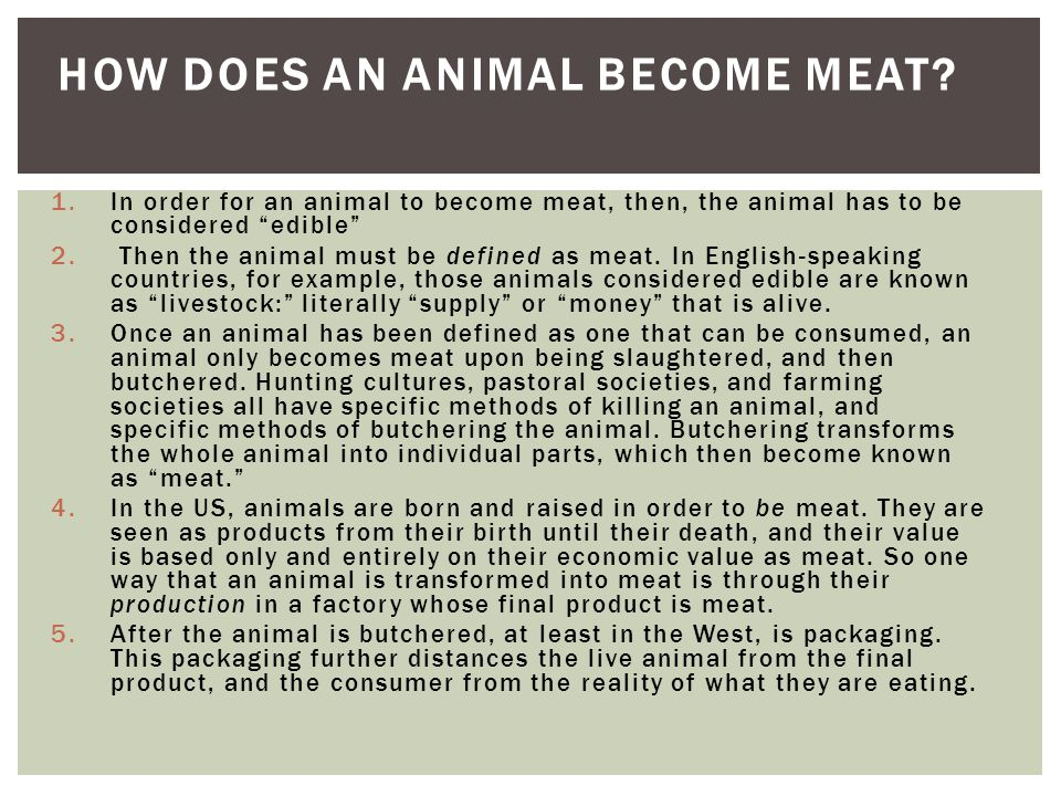 1.In order for an animal to become meat, then, the animal has to be considered edible 2.