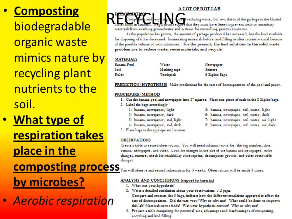 RECYCLING Composting biodegradable organic waste mimics nature by recycling plant nutrients to the soil.