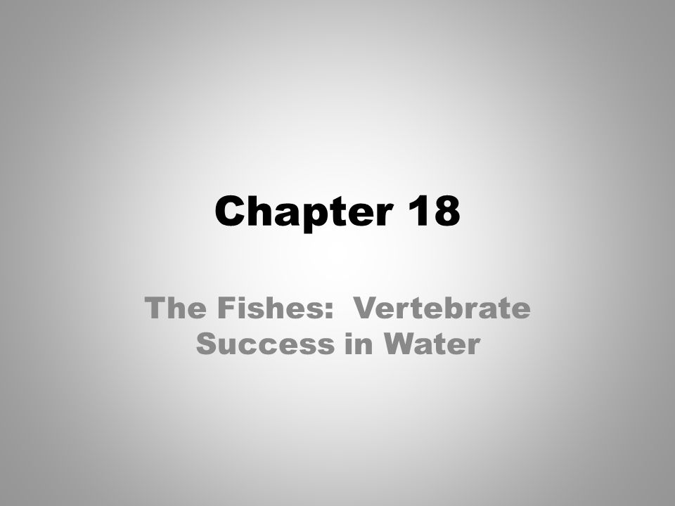 I have a paper on The success of vertebrates. help?