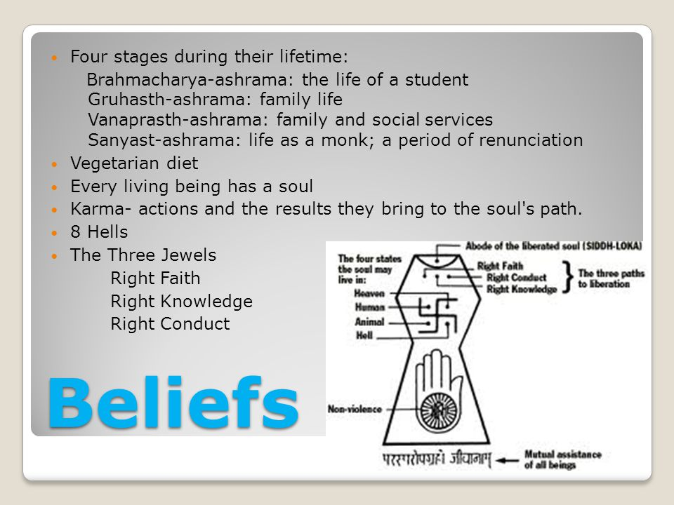 Beliefs Four stages during their lifetime: Brahmacharya-ashrama: the life of a student Gruhasth-ashrama: family life Vanaprasth-ashrama: family and social services Sanyast-ashrama: life as a monk; a period of renunciation Vegetarian diet Every living being has a soul Karma- actions and the results they bring to the soul s path.