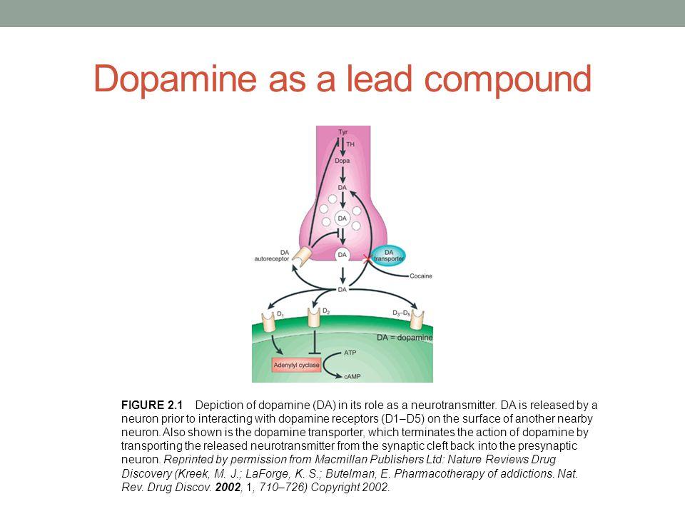 Leads based on neurotransmitters