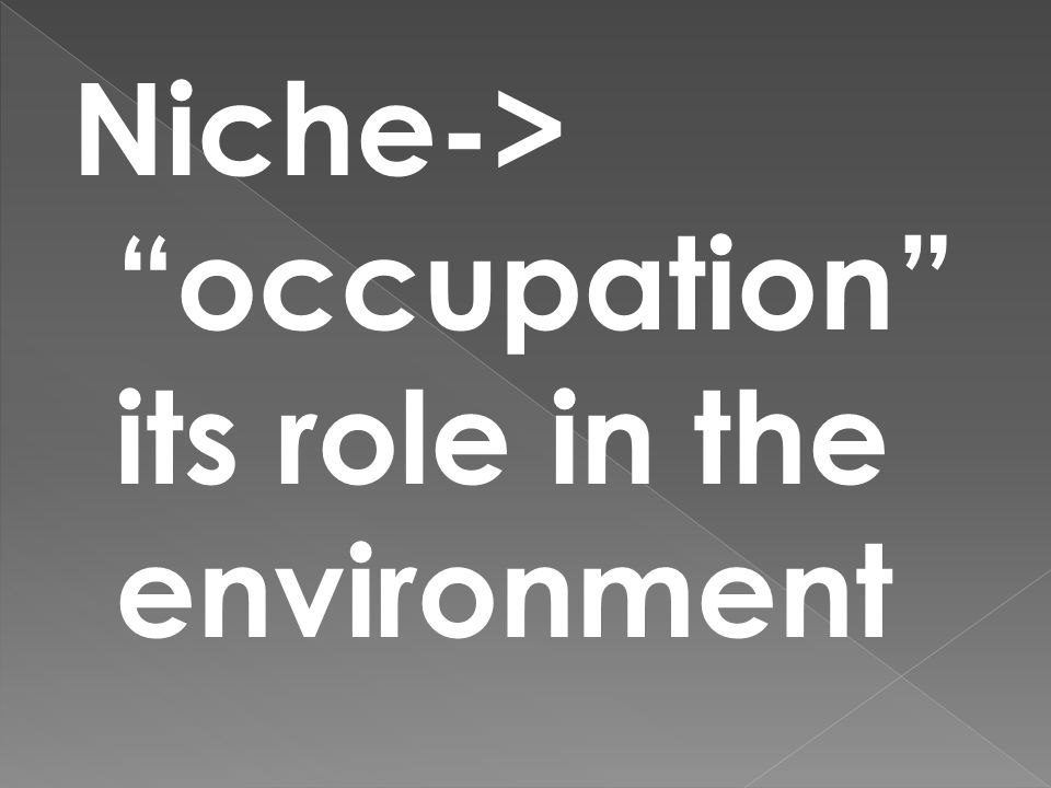 """Niche-> """"occupation"""" its role in the environment"""