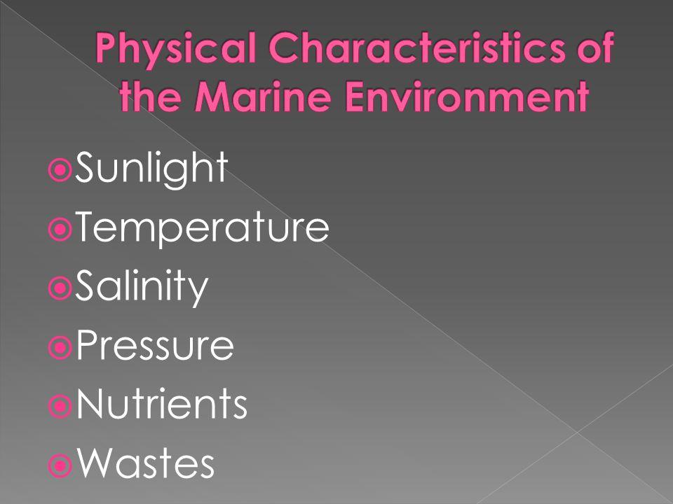  Sunlight  Temperature  Salinity  Pressure  Nutrients  Wastes