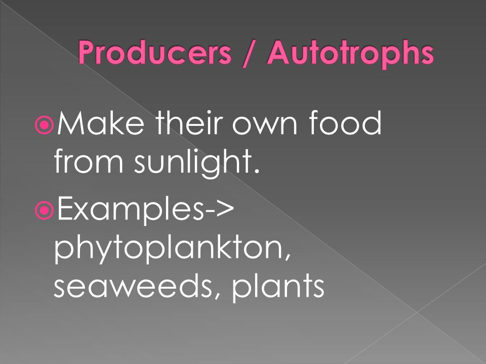  Make their own food from sunlight.  Examples-> phytoplankton, seaweeds, plants