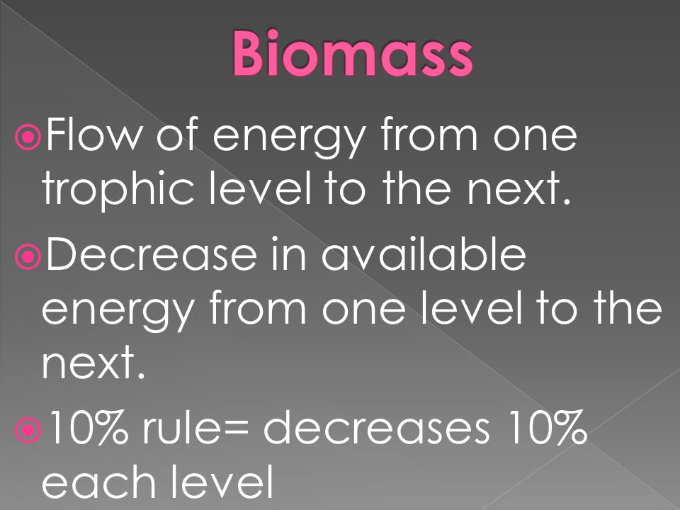  Flow of energy from one trophic level to the next.  Decrease in available energy from one level to the next.  10% rule= decreases 10% each level