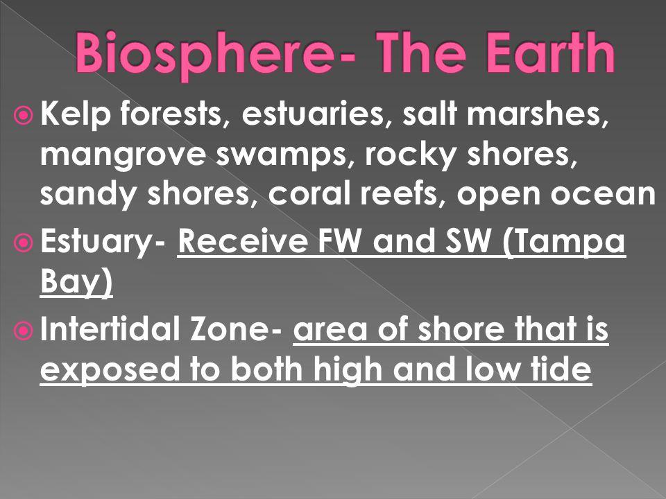  Kelp forests, estuaries, salt marshes, mangrove swamps, rocky shores, sandy shores, coral reefs, open ocean  Estuary- Receive FW and SW (Tampa Bay)