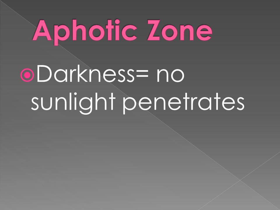  Darkness= no sunlight penetrates