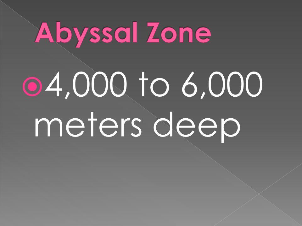  4,000 to 6,000 meters deep