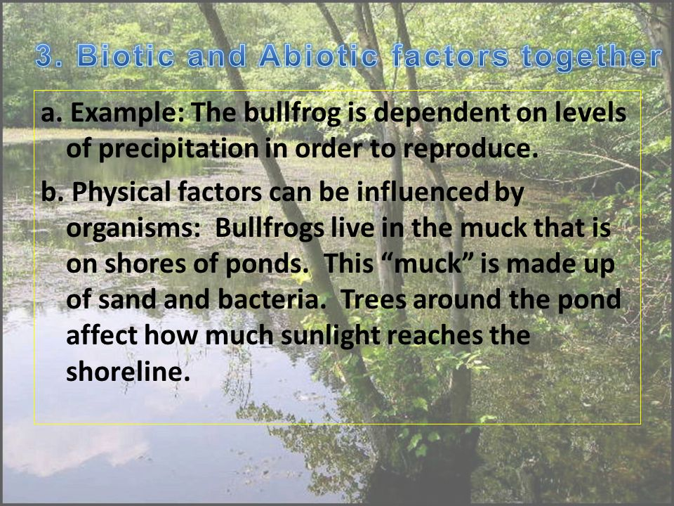 a. Example: The bullfrog is dependent on levels of precipitation in order to reproduce.