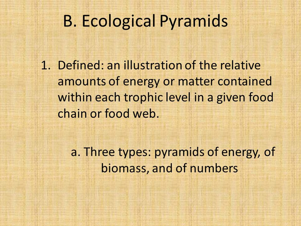B. Ecological Pyramids 1.Defined: an illustration of the relative amounts of energy or matter contained within each trophic level in a given food chai