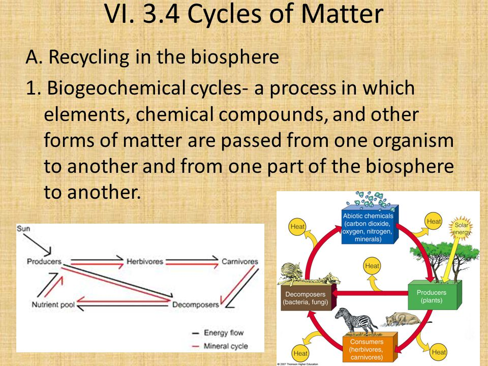 VI. 3.4 Cycles of Matter A. Recycling in the biosphere 1.