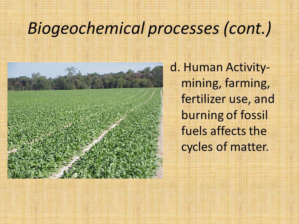 Biogeochemical processes (cont.) d.