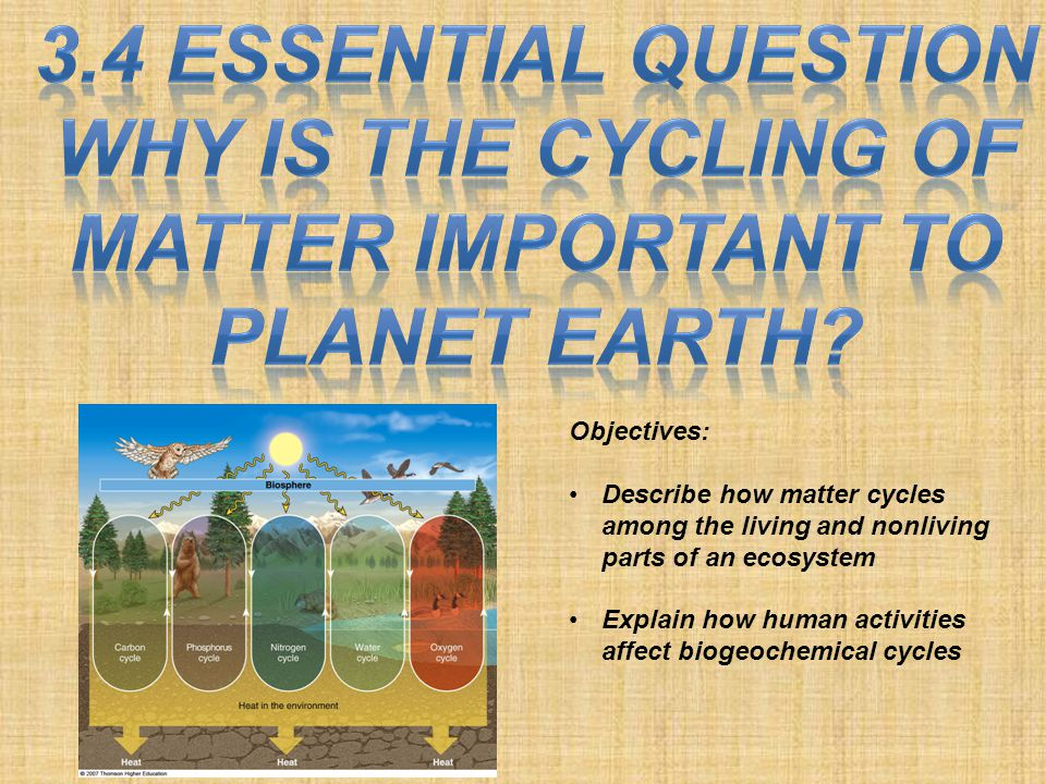 Objectives: Describe how matter cycles among the living and nonliving parts of an ecosystem Explain how human activities affect biogeochemical cycles