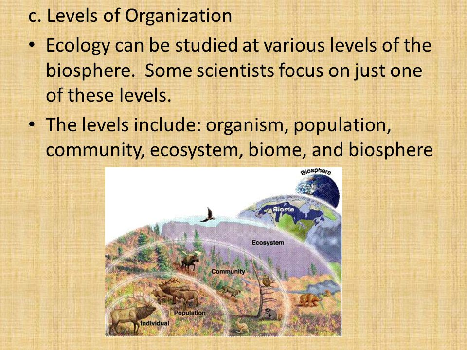 c. Levels of Organization Ecology can be studied at various levels of the biosphere.