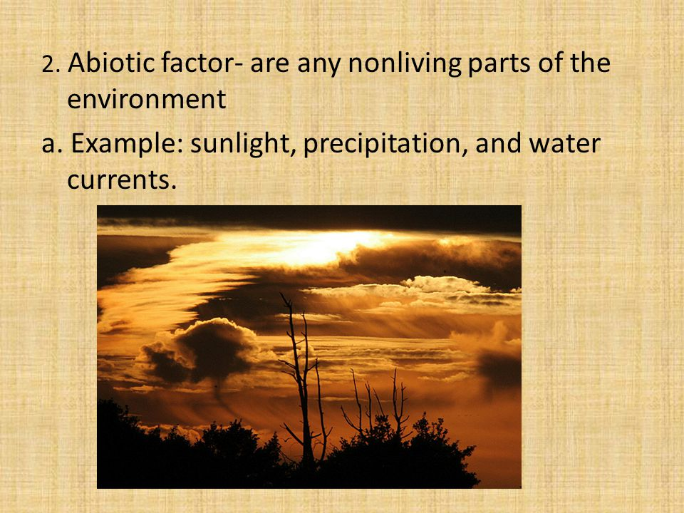 2. Abiotic factor- are any nonliving parts of the environment a.