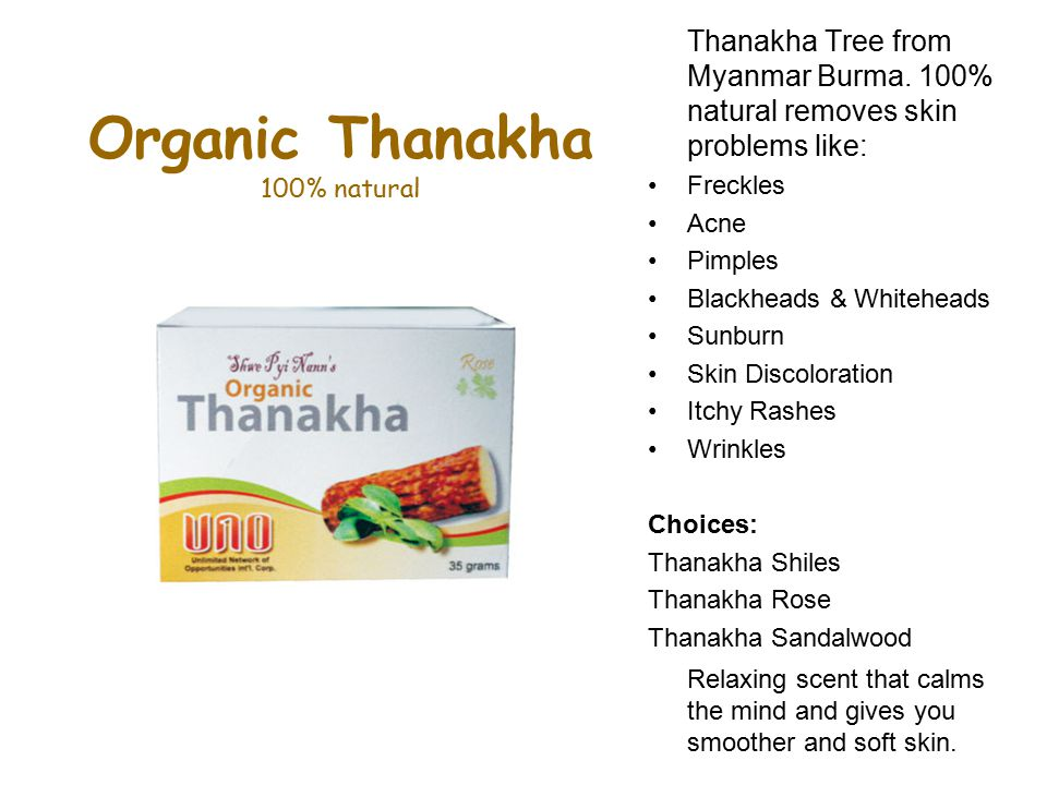 Organic Thanakha 100% natural Thanakha Tree from Myanmar Burma.