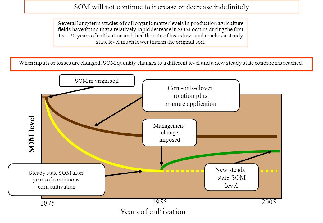 SOM will not continue to increase or decrease indefinitely When inputs or losses are changed, SOM quantity changes to a different level and a new stea