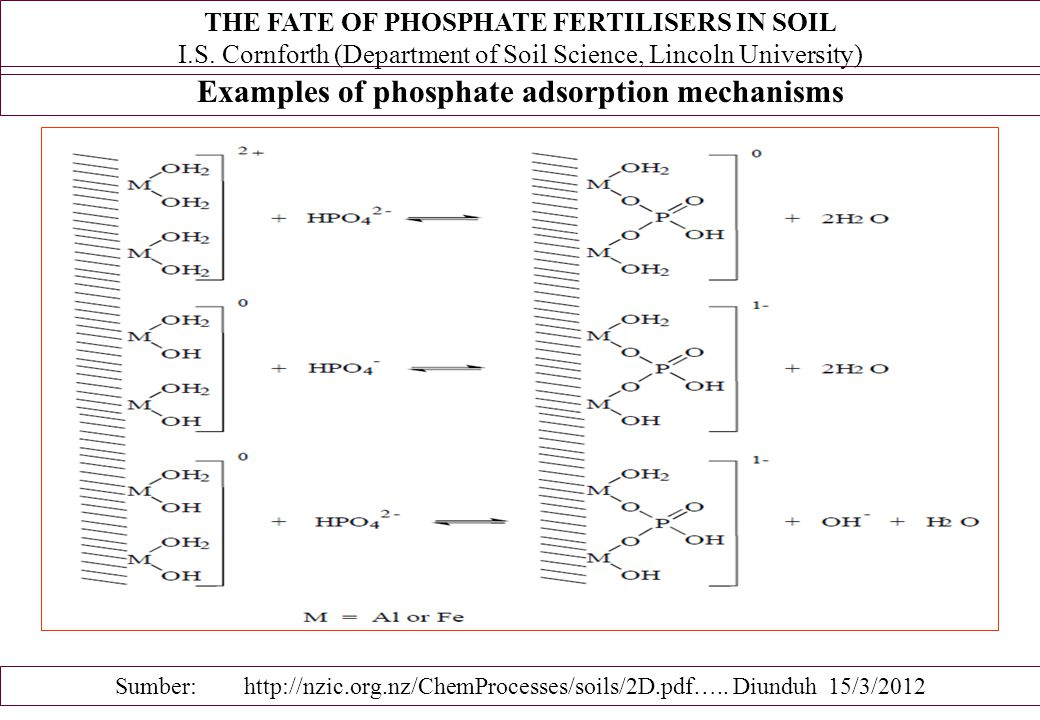 Examples of phosphate adsorption mechanisms Sumber: http://nzic.org.nz/ChemProcesses/soils/2D.pdf….. Diunduh 15/3/2012 THE FATE OF PHOSPHATE FERTILISE