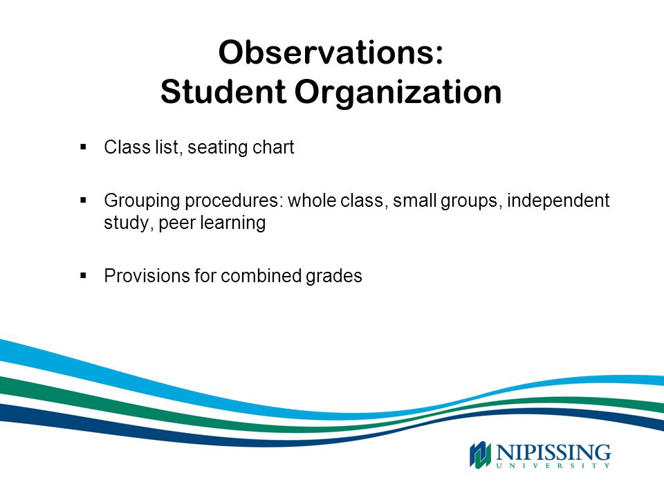 Observations: Student Organization  Class list, seating chart  Grouping procedures: whole class, small groups, independent study, peer learning  Pr