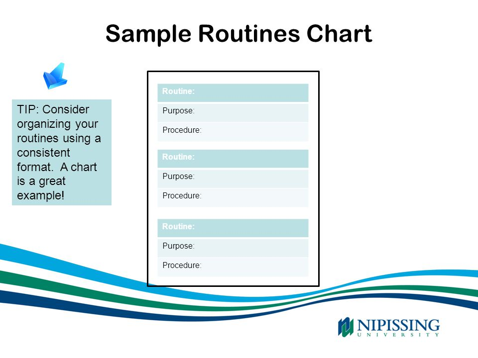 Sample Routines Chart SOURCE: 2007 Ontario Government Routine: Purpose: Procedure: Routine: Purpose: Procedure: Routine: Purpose: Procedure: TIP: Cons