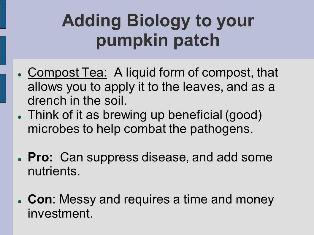 Adding Biology to your pumpkin patch Compost Tea: A liquid form of compost, that allows you to apply it to the leaves, and as a drench in the soil.
