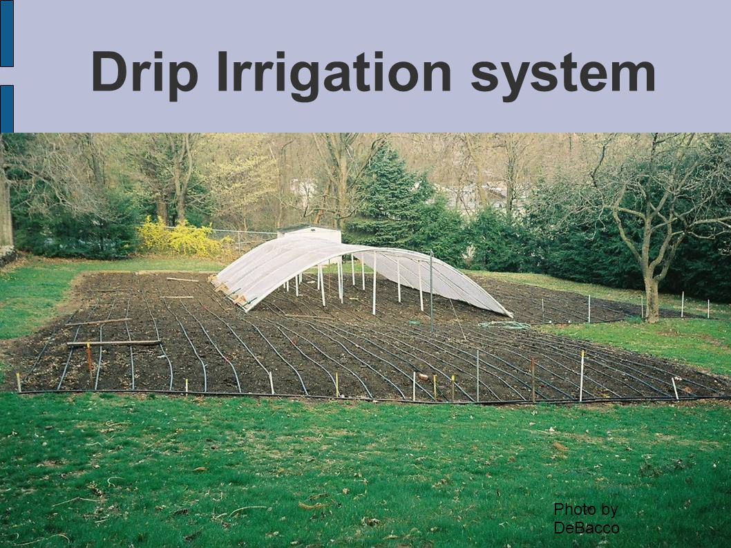 Drip Irrigation system Photo by DeBacco
