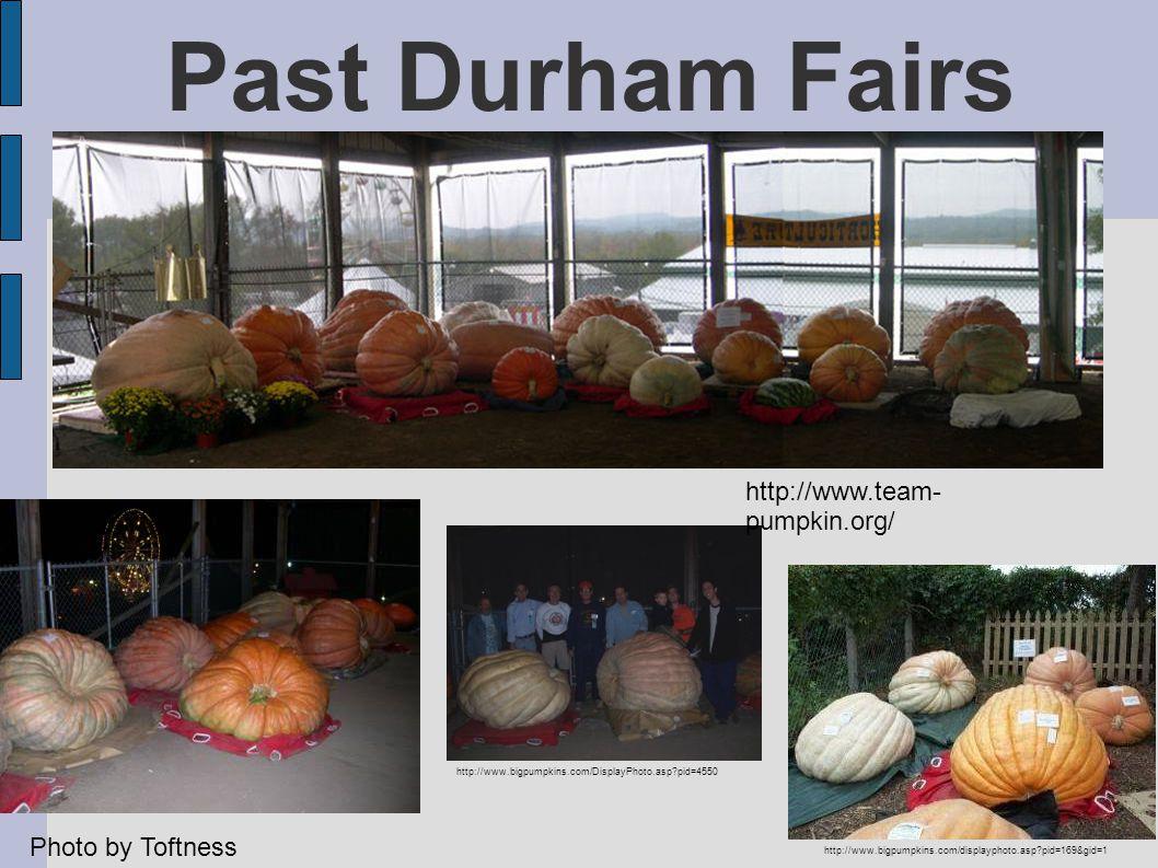 Past Durham Fairs http://www.bigpumpkins.com/DisplayPhoto.asp?pid=4550 http://www.bigpumpkins.com/displayphoto.asp?pid=169&gid=1 http://www.team- pumpkin.org/ Photo by Toftness