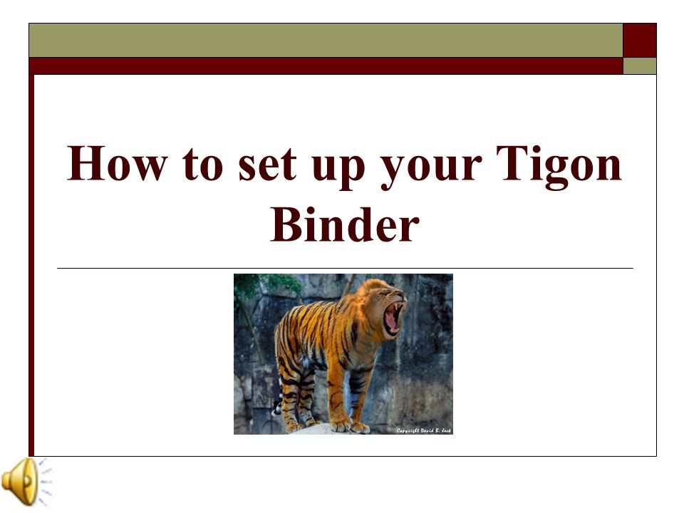 A Breed Above the Rest…  Now that you're armed with your Tigon Binder, you're ready to take on the school year with a vengeance.