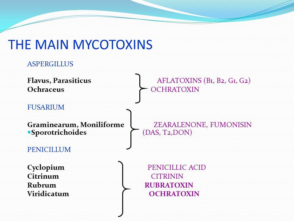 THE MAIN MYCOTOXINS ASPERGILLUS Flavus, Parasiticus AFLATOXINS (B1, B2, G1, G2) Ochraceus OCHRATOXIN FUSARIUM Graminearum, Moniliforme ZEARALENONE, FU