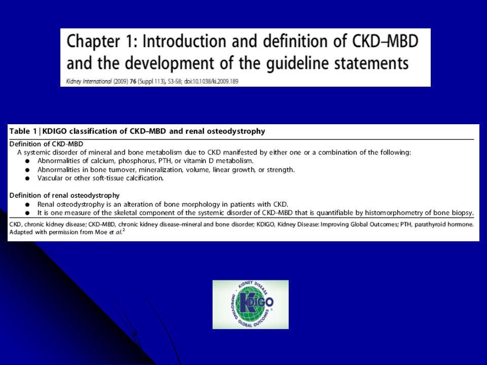 CKD-MBD P PTHCa Vit.D