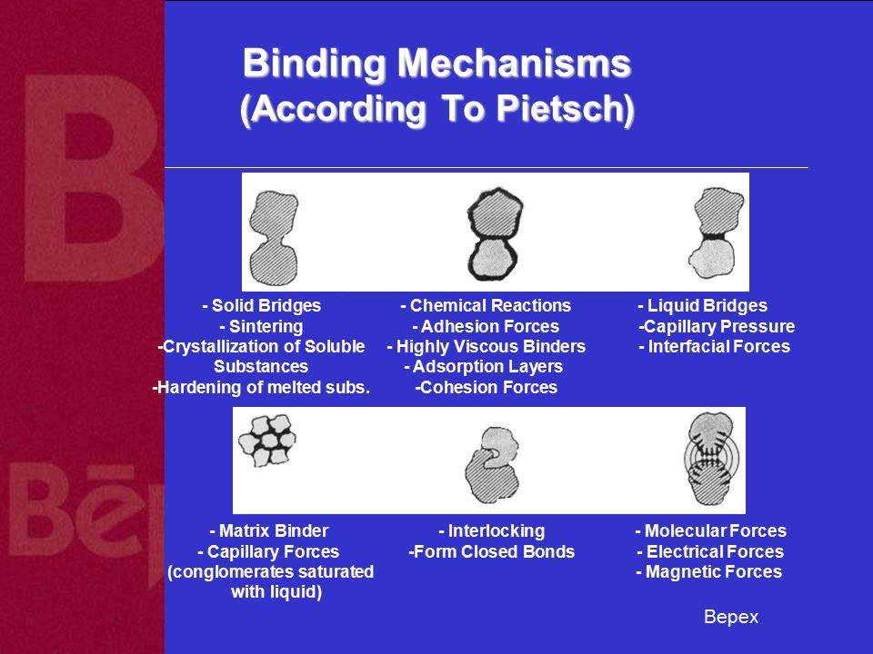 Bepex Binding Mechanisms (According To Pietsch) - Solid Bridges - Chemical Reactions- Liquid Bridges - Sintering - Adhesion Forces -Capillary Pressure -Crystallization of Soluble - Highly Viscous Binders - Interfacial Forces Substances - Adsorption Layers -Hardening of melted subs.