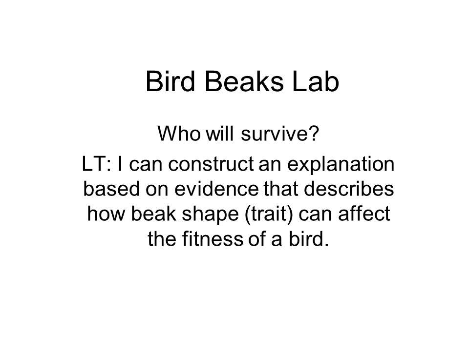 Bird Beaks Lab Who will survive.