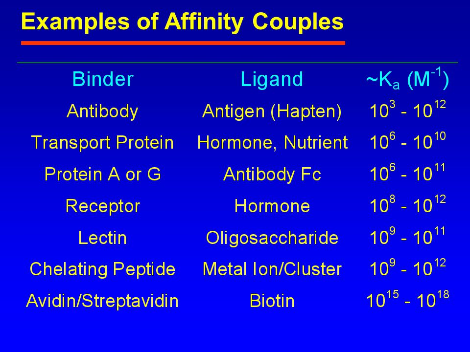Antibodies Nomenclature Epitope: the arrangement of sequential or spacially adjacent chemical groupings that are the site to which an antibody binds Paratope: the binding site of an antibody, accommodates up to ~1000 D Idiotype: collection of all epitopic sites in or near the paratope on an immunoglobulin Allotype: genetically coded differences between proteins of different individuals of a species Haplotype: complete set of alleles at all loci within a gene complex