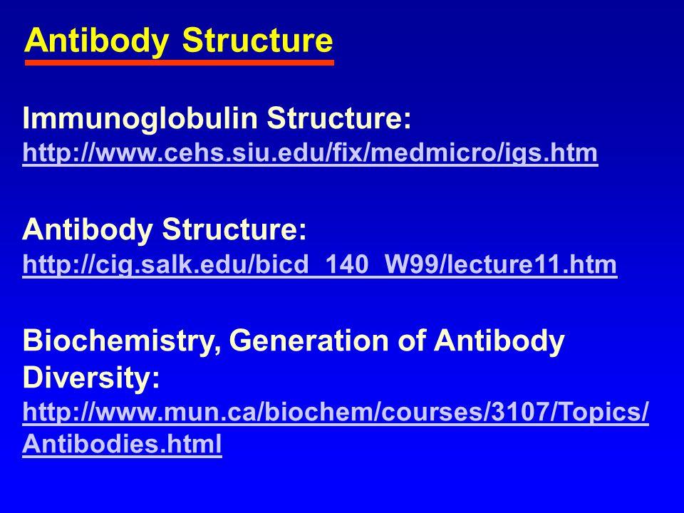 http://fig.cox.miami.edu/ ~cmallery/255/255prot/i mmunog.jpg http://hp.vect or.co.jp/autho rs/VA020045/v rml/igg.jpeg http://www.liu.edu/ cwis/bklyn/acadres/ facdev/FacultyProj ects/WebClass/mic ro- web/images/IgM.gif Antibody Structure http://www.medscape.com/content/2001/00/40/67/406737/art-jap4103.01.Fig2.jpg