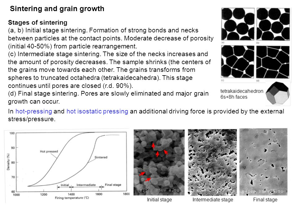 Sintering and grain growth Stages of sintering (a, b) Initial stage sintering. Formation of strong bonds and necks between particles at the contact po