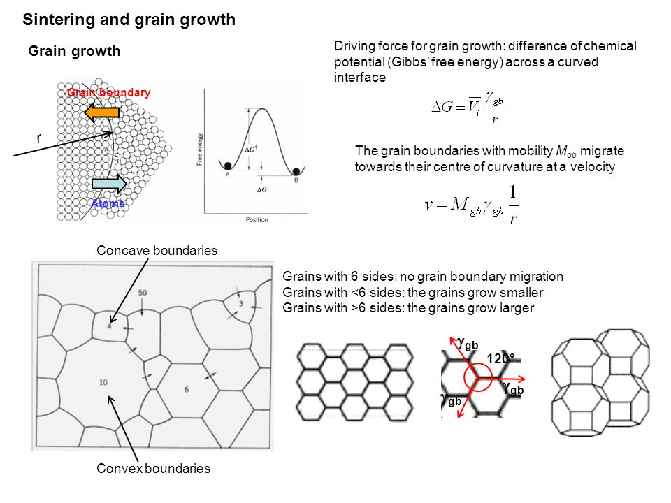 Sintering and grain growth Driving force for grain growth: difference of chemical potential (Gibbs' free energy) across a curved interface The grain boundaries with mobility M gb migrate towards their centre of curvature at a velocity Grains with 6 sides: no grain boundary migration Grains with <6 sides: the grains grow smaller Grains with >6 sides: the grains grow larger Grain boundary Atoms r Grain growth  gb 120° Convex boundaries Concave boundaries