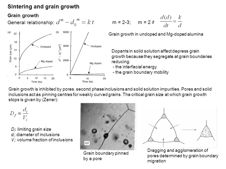 Sintering and grain growth Grain growth General relationship: m = 2-3; m = 2 if Grain growth in undoped and Mg-doped alumina Grain growth is inhibited by pores, second phase inclusions and solid solution impurities.