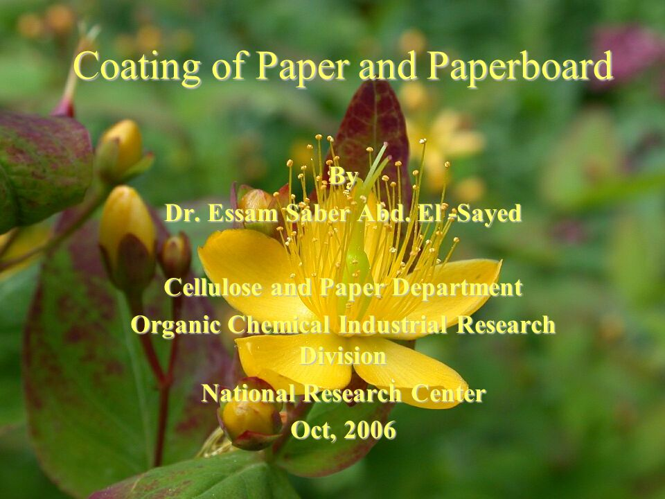 Coating of Paper and Paperboard By Dr. Essam Saber Abd.